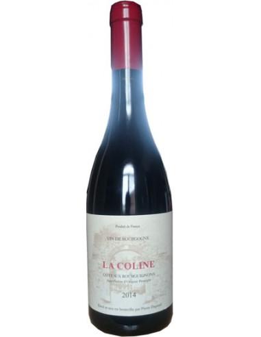 Vin Coteaux Bourguignons La Coline 2017 - Pierre Dupond - Chai N°5