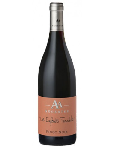 Vin Les Enfants Terribles Pinot Noir 2015 - Aegerter - Chai N°5